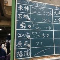 小田原早川漁港水揚げ情報|株式会社JSフードシステム