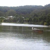 ■■【お節介焼き情報】カシャリ!一人旅 三溪園 神奈川を代表する名園
