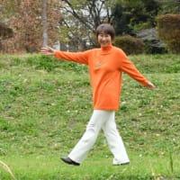 7月4日都議選 漢人あきこさんを応援します