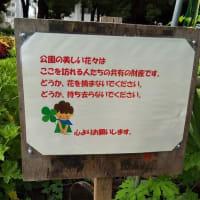赤塚公園ウエルカムガーデンの看板