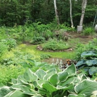 The nostalgic French garden