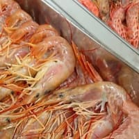 豊洲市場で海老の料理教室を開催いたしました
