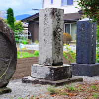 諏訪百番観世音霊場 中二十八番 「薬師堂跡」