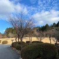 今日の箱根、リゾートワークでいかがですか。