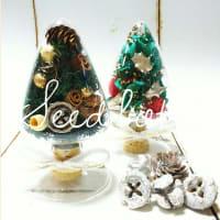 シードボトル~クリスマスグリーン&レッド~
