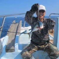 5/17(金):青物ブリにメジロゲット!!サゴシもゲット根魚はアコウにウッカリカサゴに鬼カサゴ等(*゜▽゜)ノ