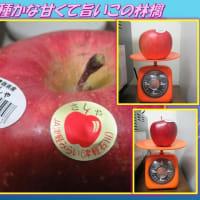 ジャンボサイズ 「新種かな甘くて旨いこのリンゴ」