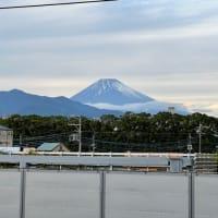 静岡県三島で出会った老舗の極美味❣️鰻重@桜家、並んでも食べたい‼️