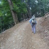 今月からは木曜日にも山を登れます。で、さっそく奥多摩へ!