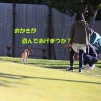 10月白犬集会