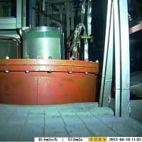 2号機圧力抑制室にロボット・・・水漏れ確認できず
