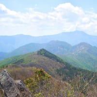 アケボノ咲く西赤石山4