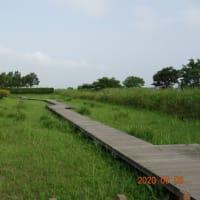 北浦川緑地
