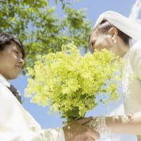 結婚相談(婚活アドバイス)#3137