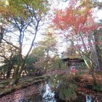 紅葉の名所のひとつ、山中温泉の鶴仙渓に行ってきた