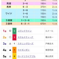 【レース回顧】サウジアラビアRC