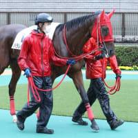 パラレルキャリア、次走11/1東京1,400m出走へ