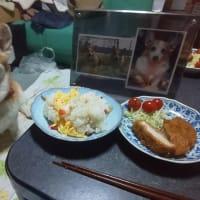 恒例!昨日の晩御飯(2019年8月22日編)&嵐&久々にやりよった!