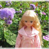 10月のお花とプルルンちゃん♪