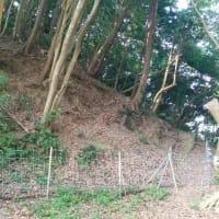 夏休み最後に野島崎灯台と滝田城址