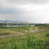 淀川堤防から