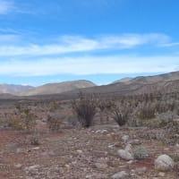 カリフォルニアの旅1 アンザ・ボレゴ砂漠州立公園