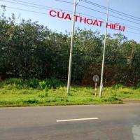 その2 平日のサイゴン行きでは逞しく生きるための刺激がたくさん!!