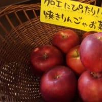 紅玉りんご販売中!