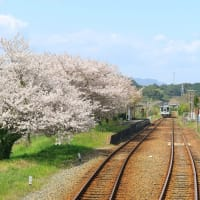 天竜浜名湖鉄道 春の車窓その4(2021年4月 原谷-いこいの広場)