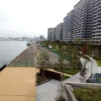 晴海埠頭のオリンピック選手都市までサイクリング