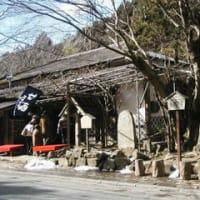 箱根旧街道を歩きました(芦ノ湖畔~甘酒茶屋)