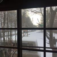 微風にそよぐガーゼのような雪景色を大事に大事に雪かきする。