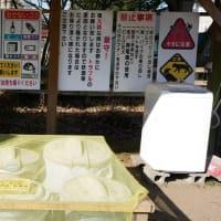 ☆★森のまきばオートキャンプ場・・・千葉県袖ケ浦市