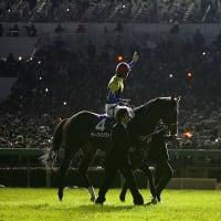 有馬記念 ~ Photo Story