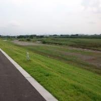 国土環境緑化協会の現場研修