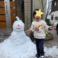 雪が降って・・・\( ˆoˆ )/