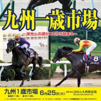 【九州1歳市場2019(Kyusyu Sale)】の「上場馬名簿(ブラックタイプ)」が公開!