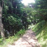 ショートカットハイキング 八幡山公園