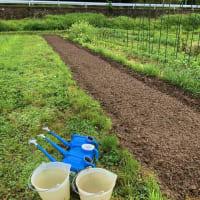 「太陽養生処理」再び 土の団粒化促進実験中~