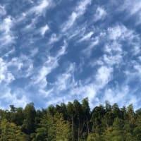 最近、雲がおもしろい