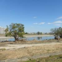 ラブホ池消滅…多摩川水害その後