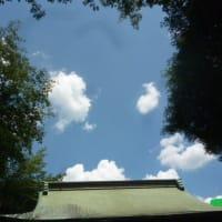 暑い東京…熱いオリンピック 。;:。へ( -_-)_ そして接近する台風8号