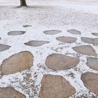 雪の山田池公園 (6)