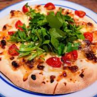 発酵食品のピザ実験