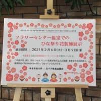 兵庫県立フラワーセンター(その2)