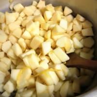 柚子と林檎で一口アップルパイ menu 524