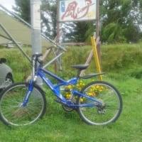 自転車一台増やしました