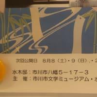 『脚本家/水木邸』7月の一般公開は11・12・25・26日のよう@水木洋子邸