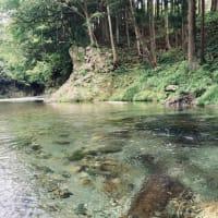 川の水に癒された~。