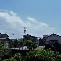 強い光の暑い日、マーガレット・オダマキ・・・富山市水橋